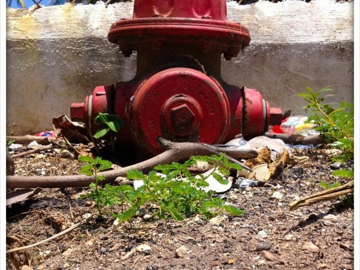 Hidrantes República Dominicana