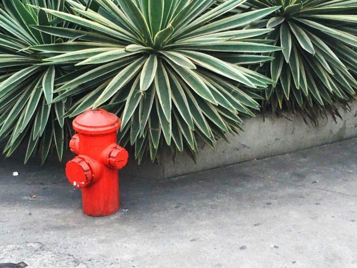 Hidrantes Colaboraciones